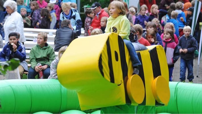 Bullriding mieten & vermieten - TIGERENTENRODEO | BULLRIDING für Kinder | **mit Personal** in Chemnitz